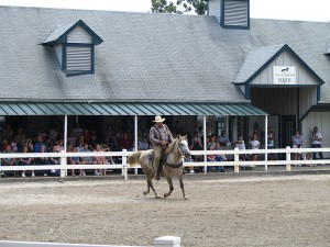 Kentucky Horse Park breed demo