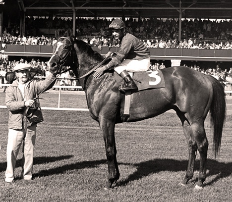 Who Won the 1968 Kentucky Derby? - ilovehorses net