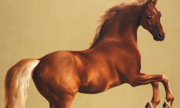 Whistlejacket, the $18 Million Horse