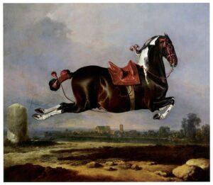 Cerbero, Spanish haute école horse