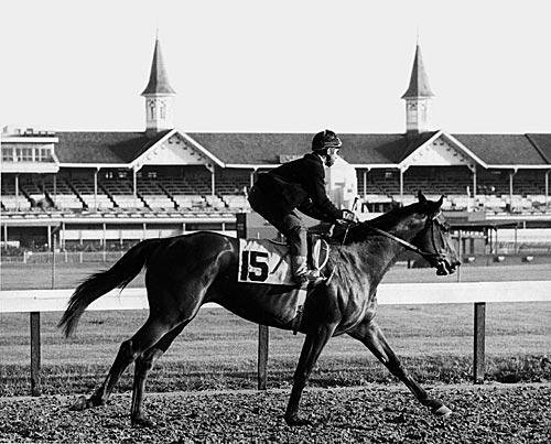 Legendary Dark Horse, Cañonero II