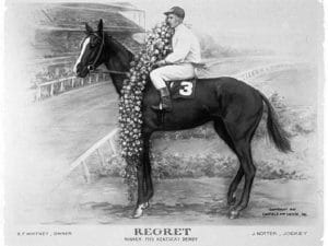 Regret Thoroughbred horse