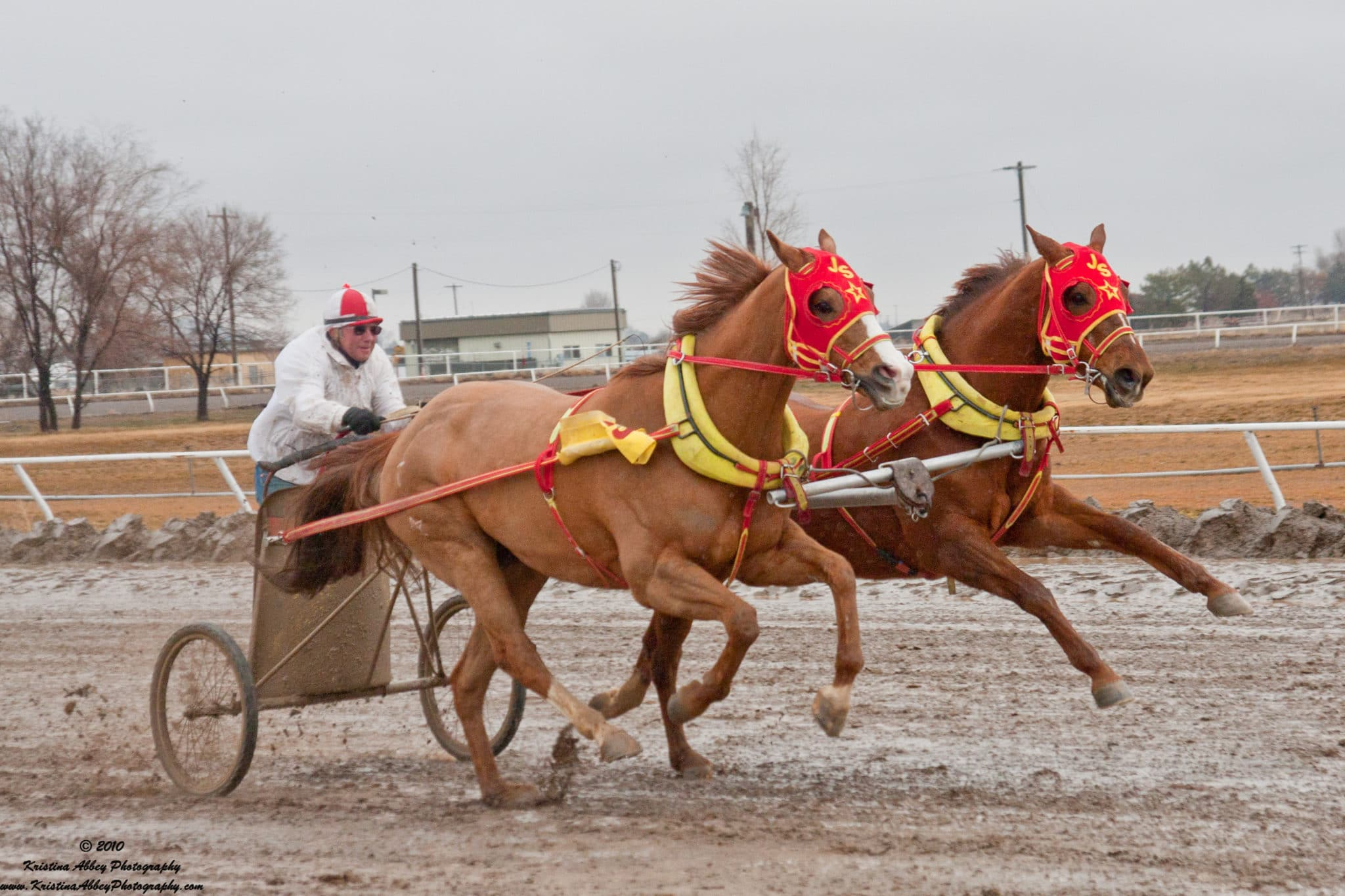 Chariot Racing: The Toughest 22 Seconds in Snow & Mud