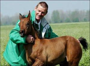 Pieraz clone horse