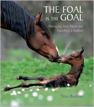 The Foal Is The Goal