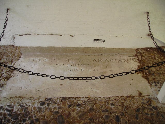 Godolphin Arabian grave