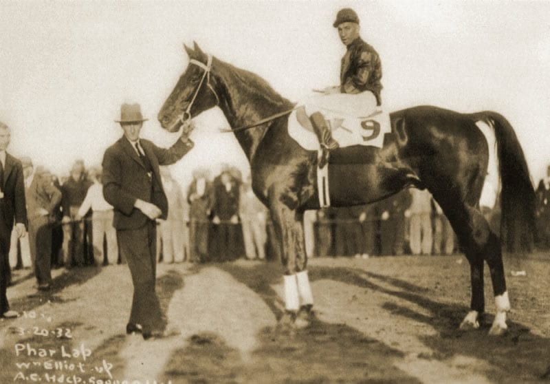 Unexpected Greatness: How Phar Lap Galloped into Australia's Heart
