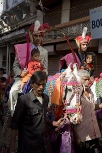 Marwari horse in an Indian wedding procession, photo by Rupert Sagar-Musgrave