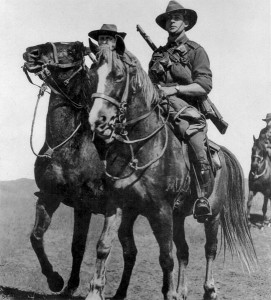 Waler horses preparing to serve as light cavalry during World War I