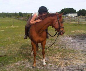 "Bon Appeal, or ""Bonnie,"" an OTTB mare with Natalie Reinert"