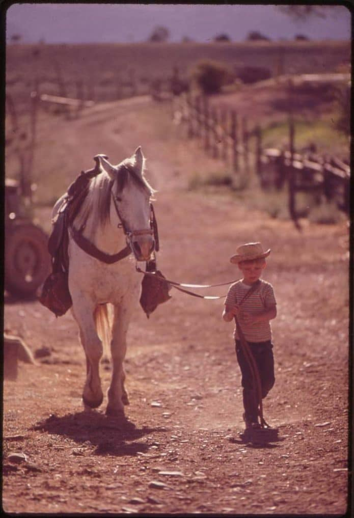 Child walking on a road with horse