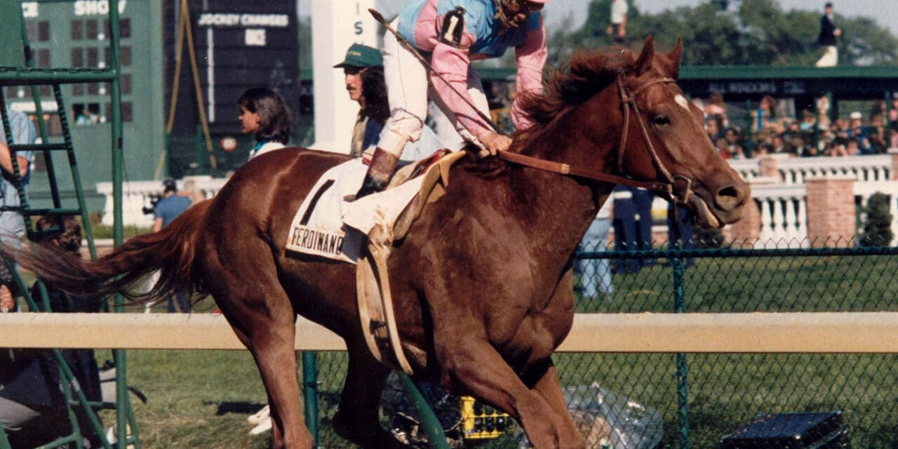 Ferdinand's Legacy Saves the Lives of Ex-Racehorses